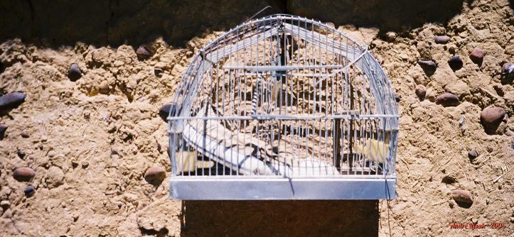 O pé direito de um All Star, dentro de uma gaiola, na parede externa do bar em Villarmentero de Campos
